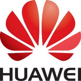Модуль защиты кэш памяти контроллера Huawei Flash Card FBWC module and 620mm Cable for SR320BC